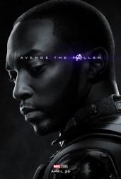 AvengersEndgame_Online Char_AvengeHonor Series_Falcon_v1_Lg