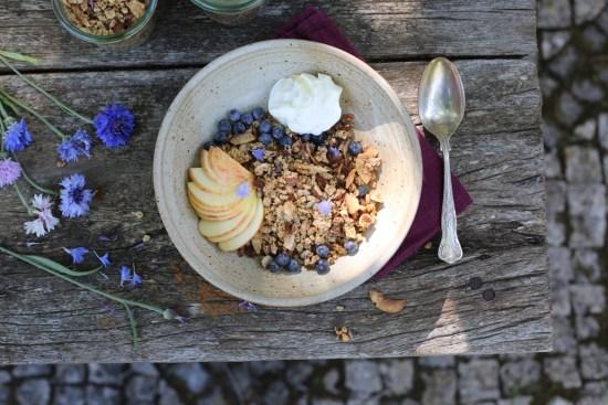 fig cluster granola - 1 (5)