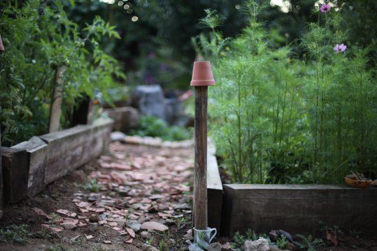 garden - 1 (2)