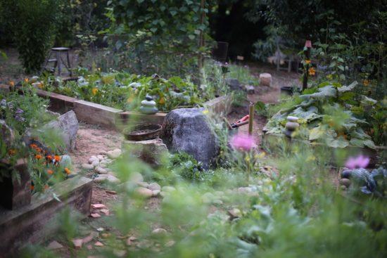 garden - 1