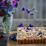 apricot blueberry crumble  tart (vegan)