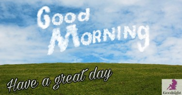 GOOD MORNING IMAGES wallpaper photo free hd download GOOD MORNING IMAGES pictures pics free hd GOOD MORNING IMAGES photo wallpaper download GOOD MORNING IMAGES pictures pics hd download GOOD MORNING