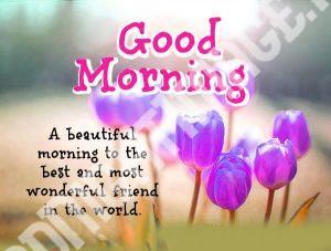 Suvichar Good Morning Images In Hindi HD Download