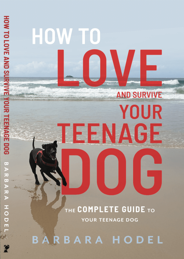 How to love and survive your teenage dog by Barbara Hodel