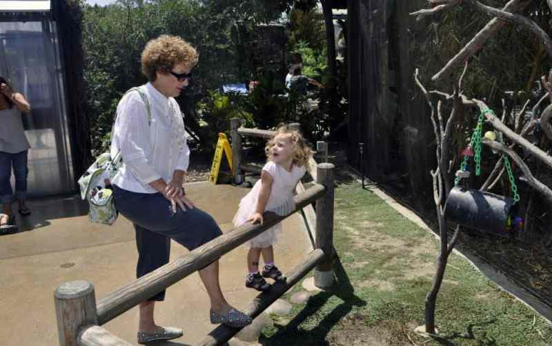good grandparenting brighter children, grandparents, relationship with grandkids