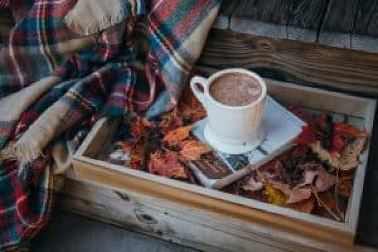 Thanksgiving Gratitude, Gratitude; cup of hot chocolate