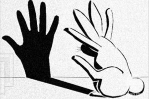 bunny-projection