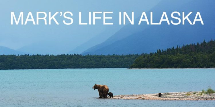 Mark's Life in Alaska Blog with bear on the water scene