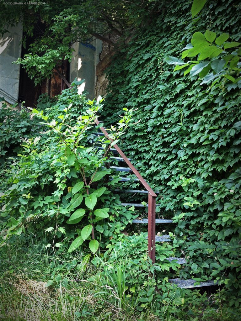 CSX-haunted-bridge-overgrown-stairway