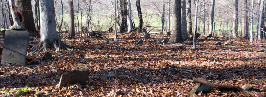 View of the Kitchen Cemetery near Sand Brook
