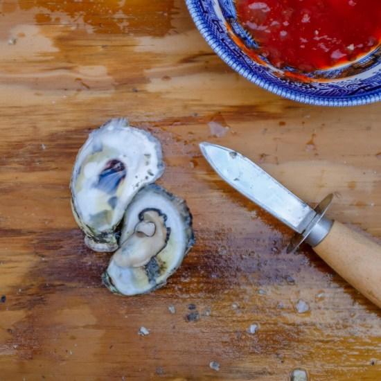 oyster shucker knives