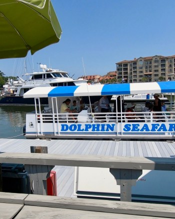 Seafari Dolphin Cruise in Hilton Head