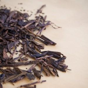 Hojicha tea stories