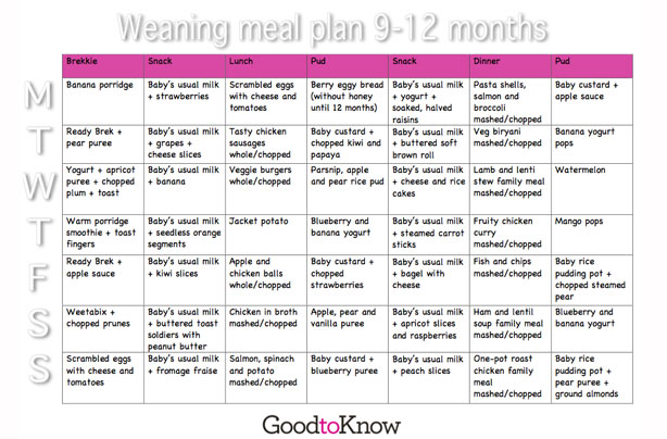 """Search Results for """"Baby Food Chart In Tamil"""" – Calendar 2015"""