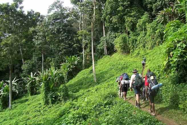 Rural tourism in Papua New Guinea; the Kokoda Track
