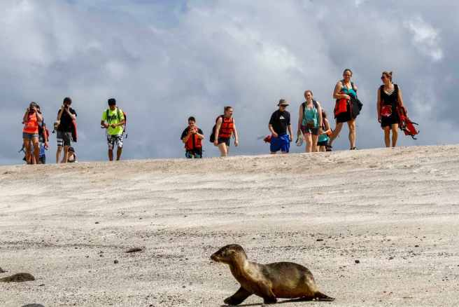 Galapagos tourism threatens wildlife. Image by By Agencia de Noticias ANDES (CC BY-SA 2.0) via Flickr