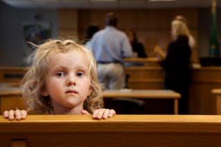 Image result for Custody battles