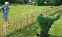 Using Law of Attraction on Neighbor's Bad Behavior