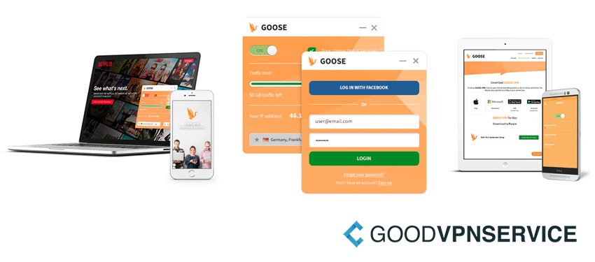 Interface van GOOSE VPN