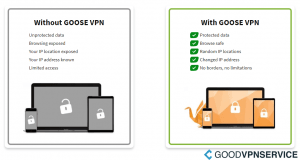 Difference with GOOSE VPN