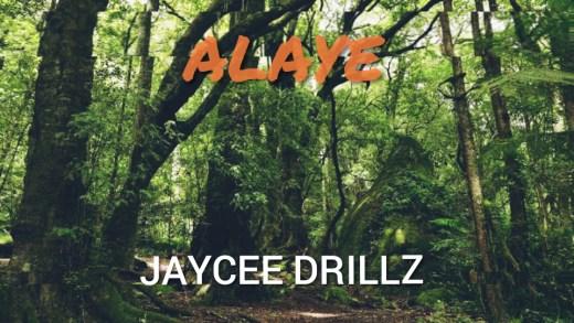 Freebeat: Alaye – Rema x Zinoleesky Amapiano Type Beat (Prod by Jaycee Drillz)