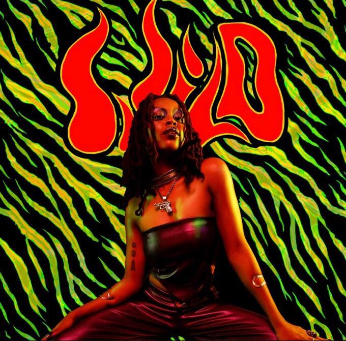 Lady Donli - 'Wild' Download