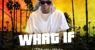 Shatta Wale – What If download