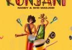 Nandy ft. Sho Madjozi – 'Kunjani' download