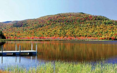 Fall In New England September 2019