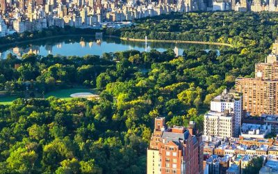 NEW YORK CITY MAY 2020