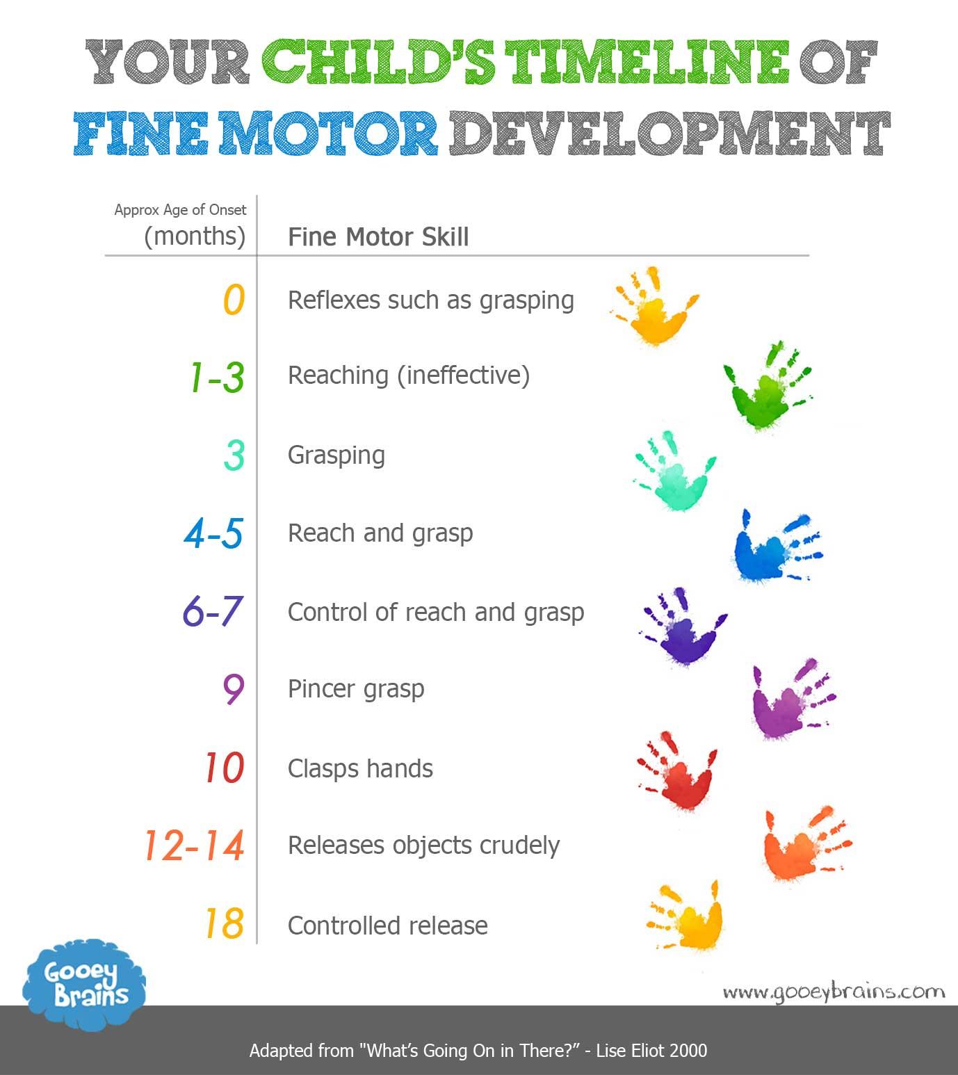 Child Development Motor Skills 101