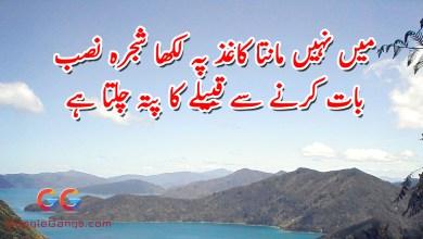 Main Nahi Manta Kaghaz Pe Likha Shajra Nasab