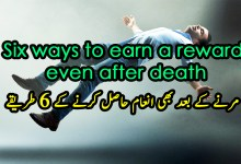 Six ways to earn a reward even after death