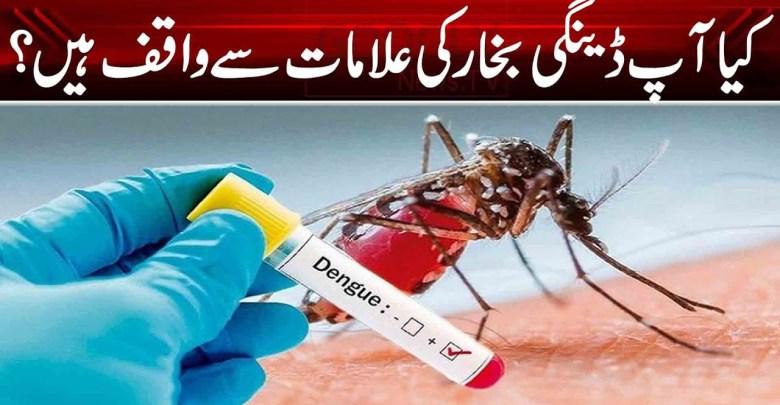 کیا آپ ڈینگی بخار کی علامات سے واقف ہیں؟