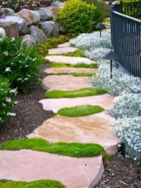 70 Magical Side Yard And Backyard Gravel Garden Design Ideas (7)