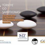 22. Türkiye Go Şampiyonası