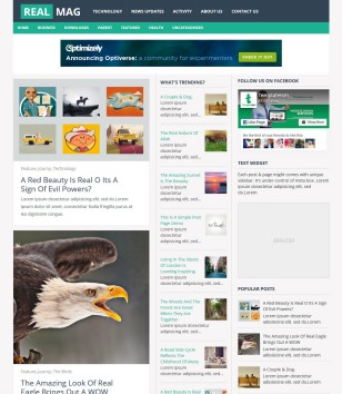 RealMag Responsive Blogger Templates