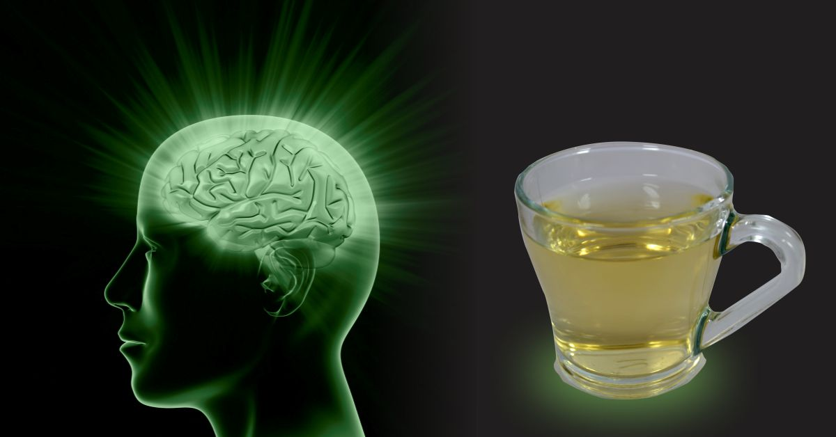 Green tea brain health