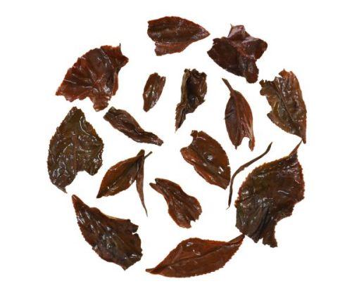 Darjeeling Muscatel Black Tea Infusion