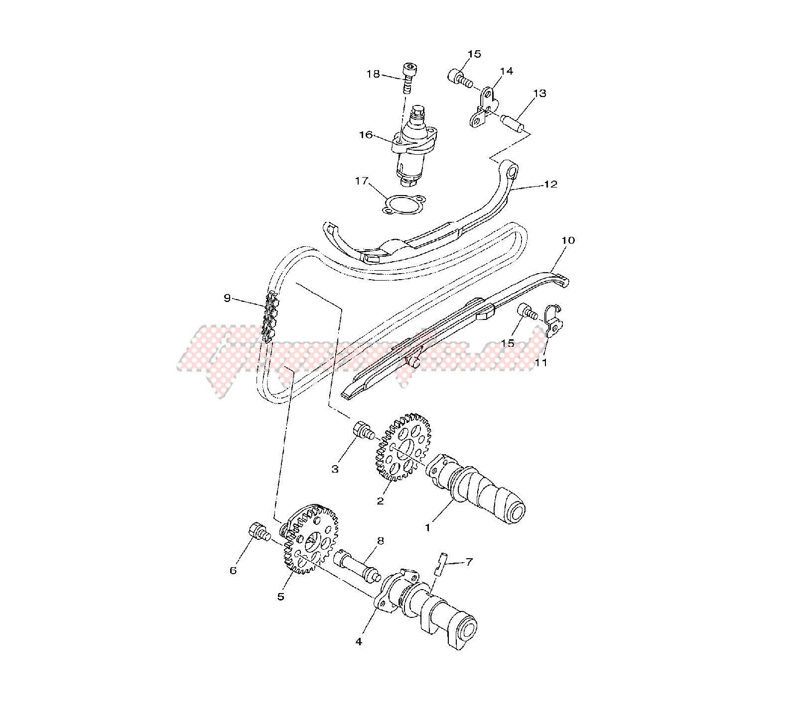 Oem Camshaft And Timing Chain