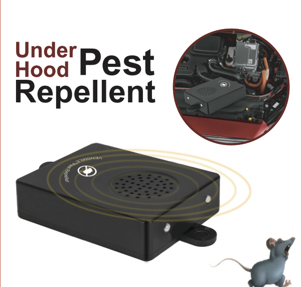 Stop rodent damage to cars