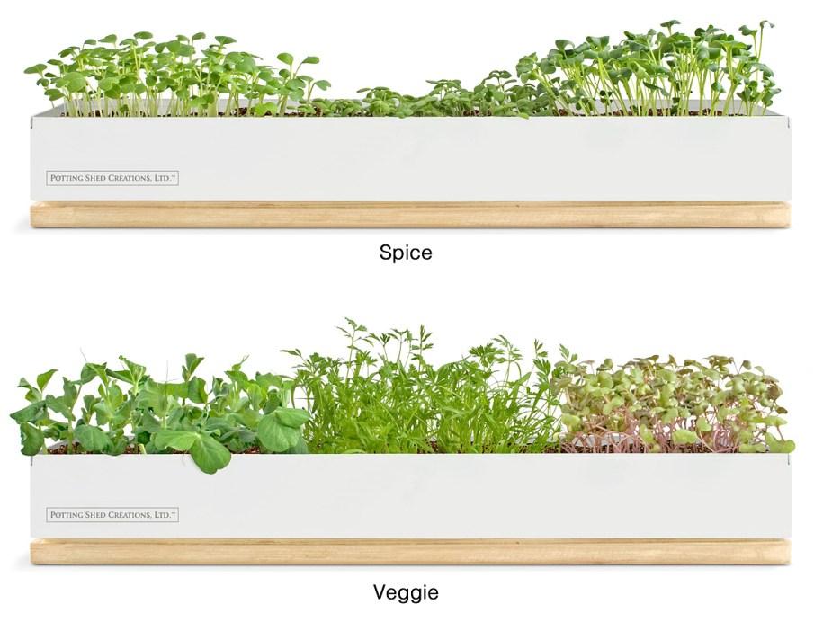 plantingboxes