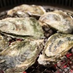 South Carolina: Oyster roast slated
