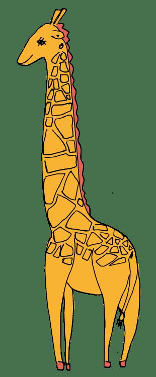 giraffe-colour