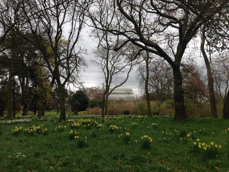 botanic gardens dublin