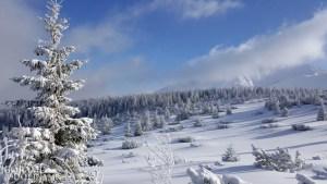 warto jeździć zimą w góry