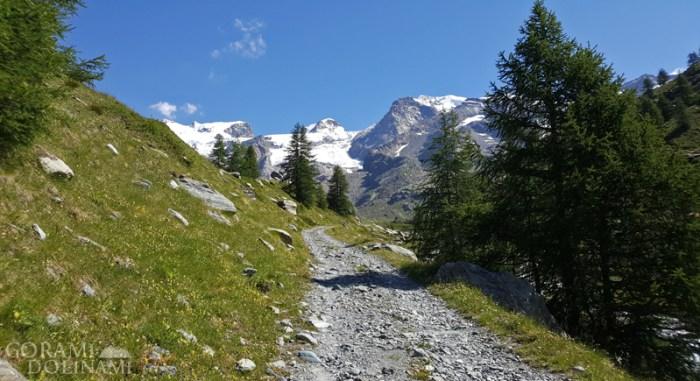 Dolina Aosty, w tle Roccia Nera i Pollux, Alpy Walijskie