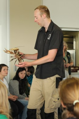 Black Snake presenter and a Giant Murray River Crayfish