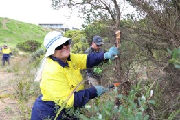 Gordon TAFE students help remove woody weeds near Deep Creek