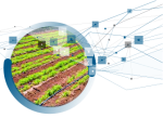 Agriculture expertise image